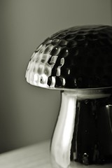 House Mushroom (Lostash) Tags: mono blackwhite art arty object mushroom ceramic light shadow texture