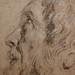 VAN DYCK Antoon - Tête d'Homme barbu, de profil (drawing, dessin, disegno-Louvre RF29063) - Detail 5