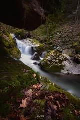 Río Urumea (Navarra) (JoseMi Campos) Tags: fotografia naturaleza paisaje cascada navarra longexposure nikon tokina landscape