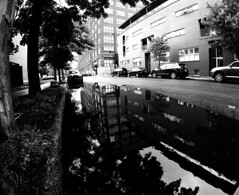 Rue Shearer Reflections (MassiveKontent) Tags: noiretblanc blackwhite montreal bw contrast city monochrome urban blackandwhite streetphoto montréal building quebec streetphotography bwphotography streetshot gopro fisheye architecture geometric lines symmetry reflection water asphalt street blancoynegro