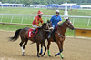 "2018-06-08 (8) r1 Ricardo Chiappe on #1 Lady Loose (JLeeFleenor) Tags: photos photography md maryland marylandracing marylandhorseracing laurelpark jockey جُوكِي ""赛马骑师"" jinete ""競馬騎手"" dżokej jocheu คนขี่ม้าแข่ง jóquei žokej kilparatsastaja rennreiter fantino ""경마 기수"" жокей jokey người horses thoroughbreds equine equestrian cheval cavalo cavallo cavall caballo pferd paard perd hevonen hest hestur cal kon konj beygir capall ceffyl cuddy yarraman faras alogo soos kuda uma pfeerd koin حصان кон 马 häst άλογο סוס घोड़ा 馬 koń лошадь outside outdoors"