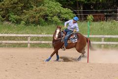 JBC_5545.jpg (Jim Babbage) Tags: krahc horseshow appaloosa horses 2018 bethany
