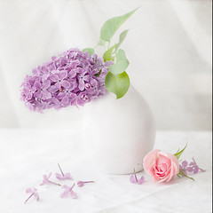 Summer still. (BirgittaSjostedt) Tags: lilac rose plant flower still stilllife flowercard card text greetings soft softly beauty window table romantic birgittasjostedt texture