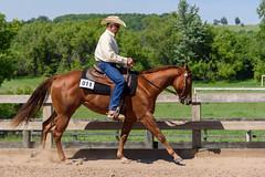 JBC_5966.jpg (Jim Babbage) Tags: krahc bethany appaloosa horses horseshow 2018