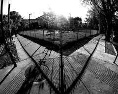 Parc Joe Beef Chainlink Fence 2 (MassiveKontent) Tags: streetphotography bwphotography streetshot geometric lines bw contrast city monochrome urban blackandwhite streetphoto chainlinkfence shadows park gopro fisheye montréal montreal quebec pointsaintecharles concrete asphalt sunshine sun corner noiretblanc blancoynegro