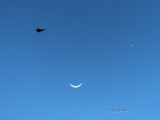New moon, Venus and F16 😉