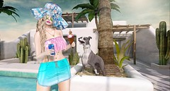 Mine! (Duchess Flux) Tags: froufrou cosmopolitan imaginarium rewind collabor88 promagic analogdog lelutka skinnery chicchica milkmotion jian secondlife sl