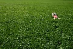 Summer Bed (CoolMcFlash) Tags: green person woman lying summer negativespace copyspace nature canon eos 60d grün frau minimalistic minimalism minimalistisch liegen relax ausruhen sommer natur fotografie photography grass gras hayfield wiese tamron b008 18270