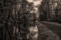 The frightening beauty - Пугающая красота. (Igor Danilov Philadelphia) Tags: scaring beauty sepia bw frightening road way hidden
