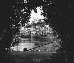 The gap (RuiFAFerreira) Tags: beauty black blackwhite bw bnw white porto portugal river city cityscapes urban canon efs24mmf28stm houses monochromat monochrome