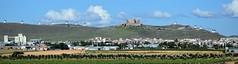 Consuegra (Castilla-La Mancha, España, 12-6-2018) (Juanje Orío) Tags: 2018 consuegra provinciadetoledo castillalamancha españa espagne espanha espanya spain castillo castle molino paisaje landscape