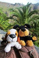 friends on a trip :) (green_lover (your COMMENTS are welcome :))) Tags: toy toys dogs masca tenerife canaryislands palms travels two 7dwf