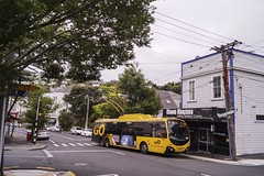 Brooklyn - Cleveland Street (andrewsurgenor) Tags: transit transport publictransport nzbus gowellington electric trackless trolleybus trolleybuses wellington nz streetscenes bus buses omnibus yellow obus busse citytransport city urban newzealand