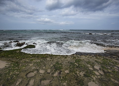 Turtle Beach (fantommst) Tags: lisaridings fantommst laniakea turtle beach honolulu oahu hawaii hi usa us sea seascape ocean pacific cloudy sand rock shelf tide empty