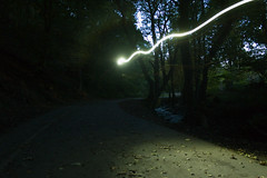Whiteley woods (kieronlong23) Tags: whiteleywoods sheffield photography longexposure nighttime paintingwithlight psychedelicphotography