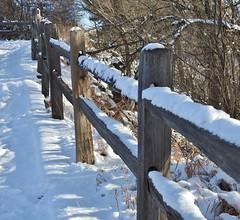 HFF...snow covered in CO (Jane Lazarz) Tags: janeelizabethlazarz walkingcolorado nikon p900 nikonp900 coloradosprings colorado janelazarz breathtakingcolorado fountaincreeknaturecenter hff happyfencefriday fence