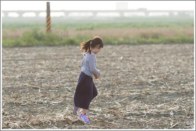 3月台南 親子寫真可以這樣拍 木棉花 蜀葵 小麥 一次讓你拍個夠 (67)