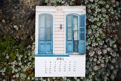 92/365 april