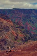 Waimea Canyon Lookout, Kauai (flowershark) Tags: shared kauai waimea canyon lookout hawaii