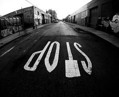 Bushwick Stop (MassiveKontent) Tags: streetphotography bwphotography streetshot gopro fisheye bw contrast city monochrome urban blackandwhite street photo nyc newyorkcity road bushwick brooklyn stop stopsign shadows perspective