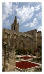 Avignon : Square Agricol Perdiguier (chriskatsie) Tags: bassin eau oiseau bird pigeon jardin avignon vaucluse provence church eglise abbaye abbey sky clod nuage tree building rouge