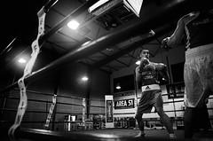 31218 - Face Off (Diego Rosato) Tags: face off incontro match ring boxe boxing pugilato boxelatina nikon d700 2470mm tamron rawtherapee bianconero blackwhite