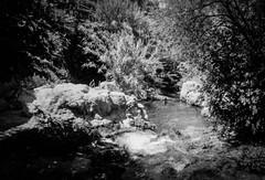 IMG_000004 (NEG35) Tags: spain pentaxespio928 filmphotography darkroomdeveloping ilforddeveloperddx ilfordrapidfixer hp5400film neg35 guadalest waterfalls