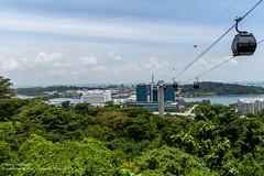 Singapore - Semtosa (Robin Hickmott) Tags: singapore sg