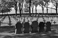 Fricourt German Cemetery (Andrew at Trawden) Tags: france fricourtgermancemetery cemetery gravestone maltesecross tree fricourt hautsdefrance fr