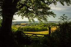 View Over Gate (clementsriley) Tags: canon dslr eos 550d digital 550 l 1740 1740mm 1740mmlf40 summer devon sun sunny grass green sky blue tree trees wood fun happy plant nature vist day daysout england land