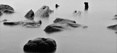 Beyond Disrepair (thetrick113) Tags: longdockpark scenichudsonlongdockpark scenichudson ruins pilings river hudsonriver hudsonvalley hudsonhighlands hudsonrivervalley beaconnewyork dutchesscountynewyork spring 2018 spring2018 sonyslta65v longexposure