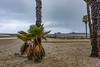 USA_2927-Edit.jpg (peter samuelson) Tags: california2018 resor usa california santamonicapier venicebeach santamonica pier baywatch waterfront