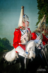 Ritual (RaeofGold) Tags: london travel britain kimklassentexture queenshorseguard uniform tradition ritual royal royalty red peeblespair raeofgoldstudio