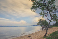 Pasir Ris Park, Singapore (cattan2011) Tags: seascape waterscape beaches sunrise traveltuesday travelphotography travel naturelovers natureperfection naturephotography nature landscapephotography landscape 新加坡 pasirrispark singapore