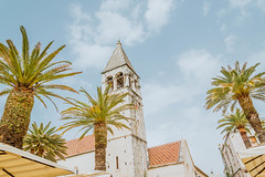 Tower of cathedral in Trogir (wuestenigel) Tags: seaside palms city croatia trogir cathedral travel tower noperson keineperson reise sky himmel architecture diearchitektur palm palme vacation ferien outdoors drausen tree baum summer sommer tourism tourismus building gebäude traditional traditionell house haus tropical tropisch religion island insel old alt fairweather schöneswetter ancient stadt