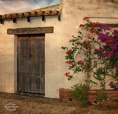 Recuerdos del pasado (Geno G.) Tags: urban puerta porton plantas flores flower medievo medieval arquitectura tejado huelva palosdelafrontera texturas texture explored exterior