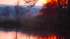 I see fire (tarnpulli) Tags: evening germany bayern river sunset
