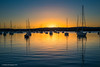 Golden glow (The0dora Photography) Tags: the0doraphotography valentine lakemacquarie lake olympus