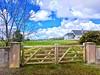 New Gates (JulieK (thanks for 7 million views)) Tags: gate fence hff 2018onephotoeachday house tree lawn wexford ireland irish
