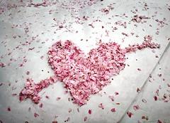 Cherry heart (MelindaChan ^..^) Tags: chanmelmel mel melinda melindachan skorea travel spring