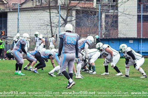 Golden Bears - Legionaries Sremska Mitrovica (01.04.2017)