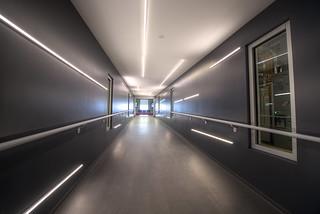 Internet Hallways