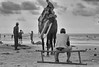 Horse ride, Digha, india (dr.subhadeep mondal's photography) Tags: streetphotography subhadeepmondalphotography seabeach sea sand people public outdoor india indianstreet life layers canon candid 800d blackandwhite monochrome