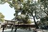 20180404 Meiji Jingu entrance (chromewaves) Tags: fujifilm xt20 samyang 12mm f20 ncs cs xf tokyo japan harajuku yoyogi park meiji jingu shrine
