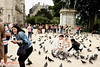 (not my) Bridal Shoot with pigeons, Cathédrale Notre-Dame de Paris. (Kent Johnson) Tags: bride streetphotography wedding pidgeons travel pigeons fujifilmxpro1 xf35mmf14r