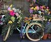 Springtime in NYC (ginoNYC) Tags: bicycle bike flowers roses spring newyorkcity newyork nyc manhattan nolita soho springflowers