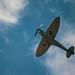 Merlin Spitfire