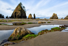 Stillness (D. Inscho) Tags: olympiccoast pointofthearches washington reflection seastack pacificnorthwest pacific beach