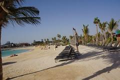 2018-06-FL-191371 (acme london) Tags: 2018 beach dubai lamer meraas uae