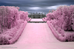 Dream Home (Brian M Hale) Tags: cottoncandy cotton candy ir infrared 590 590nm infra red castle hill ipswich mansion trees outside clouds long exposure breakthrough filters newengland new england usa ma mass massachusetts brian hale brianhalephoto